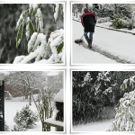 gabya_winter-collage_02-2009.jpg
